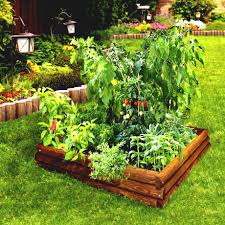 Small Picture Vegetable Garden Design Layout Garden Efficient Vegetable Garden