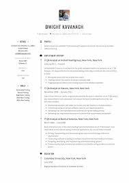 Qa Resume Resumes Engineer Format Experience Examples Tester