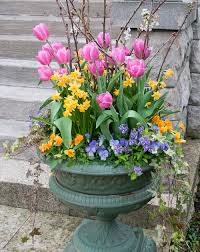 by gardenpicsandtips on february 7 2018 in container gardening