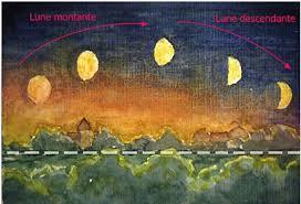 """Résultat de recherche d'images pour """"la lune montante"""""""