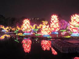 China Lights Dates Lights From China Create Magic At Calcuttas Nicco Park
