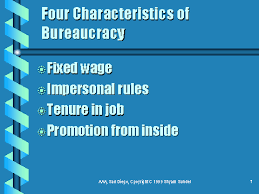tips for writing the bureaucracy essay bureaucracy means both a body of non elective government officials and an administrative policy making group bureaucracy essays over 180 000