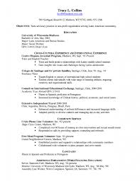 Resume Template American Resume Example Free Resume Template