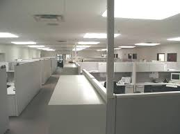 natural light office. Working Office No Natural Light Plants That Need Requirements
