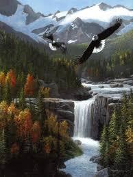 freedom falls canvas art kevin daniel x