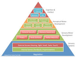 Moveabout Therapy Services Our Services Therapeutic Model