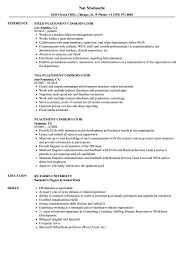 Placement Coordinator Resume Samples Velvet Jobs
