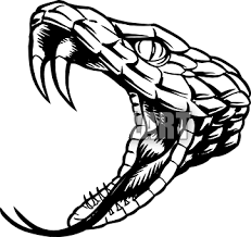 rattlesnake head clipart.  Head Snake Head Clip Art Clipart Sketch Drawing Art  Rattlesnake Tattoo And