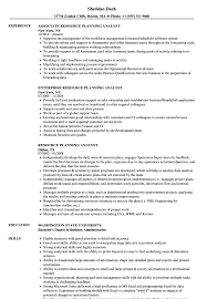Resource Planning Analyst Resume Samples Velvet Jobs