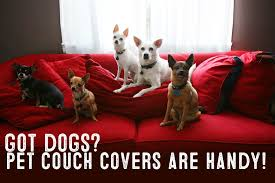 cover my furniture. Best Pet Furniture Covers For Couches Cover My Furniture