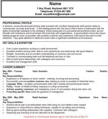sales assistant cv example index of wp content uploads 2013 01