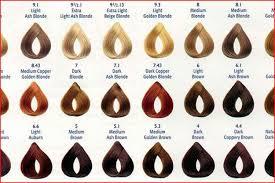 Inoa Supreme Color Chart 66 Genuine Inoa Supreme Farbkarte Pdf