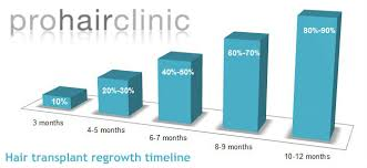 Regrowth Phase After A Hair Transplantation Prohair Clinic