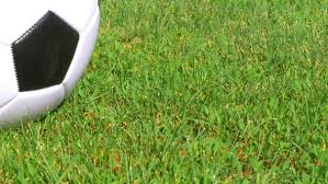 green grass soccer field. Play Preview Video Green Grass Soccer Field
