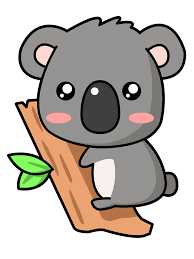 Image result for cartoon koala