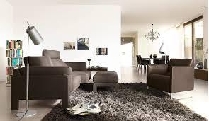 Colorful Living Room Sofa SetsBlack Living Room Rugs