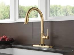 Kitchen Faucet Newport Brass Handheld Shower Houzz Kitchen