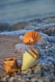 120 best Спирали и ракушки images on Pinterest | Origami, Conch ...