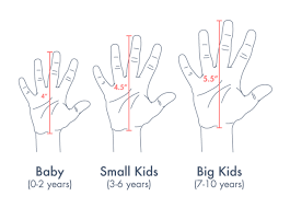 Size Chart Which Size Is Best For You Because Size