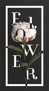 Barron Designs Coupon 40 Floral Typography Designs That Combine Flowers Text