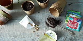 how to read seed packets seed catalogues to choose the right plants for your garden
