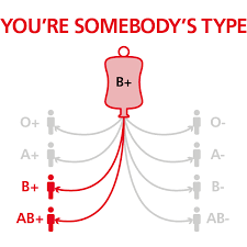 Who Can Donate Blood To Whom Chart B Positive Blood Type Nhs Blood Donation