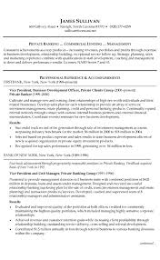 Bank Resume Template Stunning Banking Resume Example