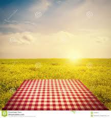 Picnic Template Picnic Template Stock Photo Image Of Summertime Countryside 28408812