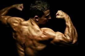 tren steroid purchase