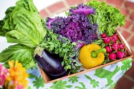 Image result for nutrient pictures