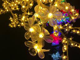 spectacular lighting. Christmas Lights Spectacular Lighting E