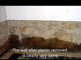 Rising Damp Causes And Cure   YouTube