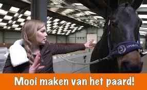 #paardenpraattv #paardensport #horsesofinstagram #paardenliefde #horseriding #paardenmeisje #paardenfotografie best paardenpraattv hashtags popular on instagram, twitter, facebook, tumblr (2249) paarden zijn prachtige beesten, heerlijk om op te rijden of naar een nieuwe boekenreeks voor kinderen die dol zijn op paarden: Paardenpraattv Logo