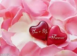 Flowers Love Quotes New Download Love Flower Quotes Ryancowan Quotes