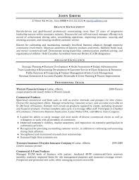 Executive Resumes Templates Stunning Insurance Executive Resume Template Dadajius