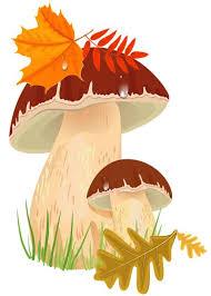 Slikovni rezultat za mushroom clipart