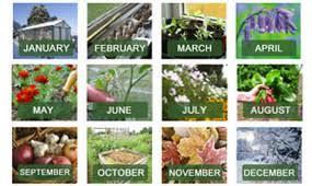 beginner gardening. What To Do In The Garden This Month Beginner Gardening R
