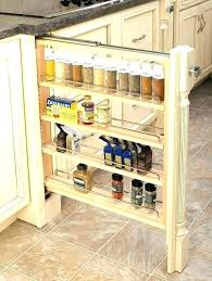 kitchen cabinet storage containers incredible kitchen cabinet storage organizers cabinets modern for kitchen cabinet storage organizers