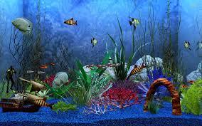 aquarium wallpaper - HD Wallpapers