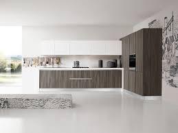 italian kitchen furniture. Kitchen,modular Kitchen Wall Units And Base Units, Cooking Unit, Italian Kitchen, Furniture