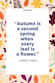Fall Quotes Unique 48 Fall Season Quotes Best Sayings About Autumn