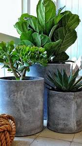 diy modern and concrete planters 2