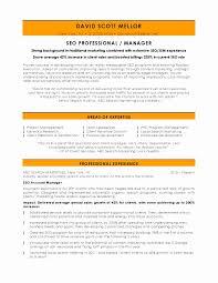 Executive Resume Examples 2017 Sample Senior Executive Resume Lovely 100 Marketing Resume Samples 92