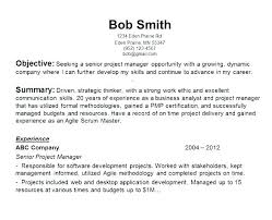 Good Example Resume Example Of Good Resume Resume Introduction