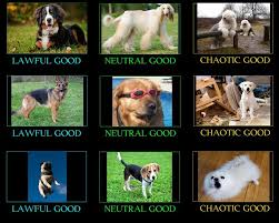 Woofers Doggos And Puppers Alignment Chart Rarepuppers