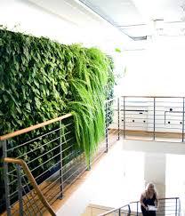 diy indoor garden decoration ideas lovely excellent diy indoor garden ideas on ideasindoor design ltd living