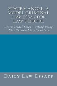 pay you to write my essay gorropu info academic essay writing term paper on computer software