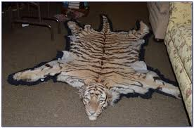 tiger skin rug real