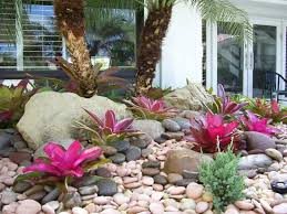 Small Picture 55 best Bromeliad Landscaping images on Pinterest Landscaping