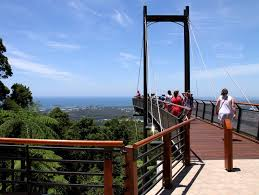 Sealy Lookout Nsw Holidays Accommodation Things To Do